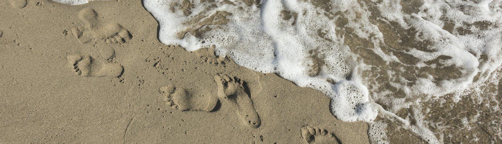 fodaftryk