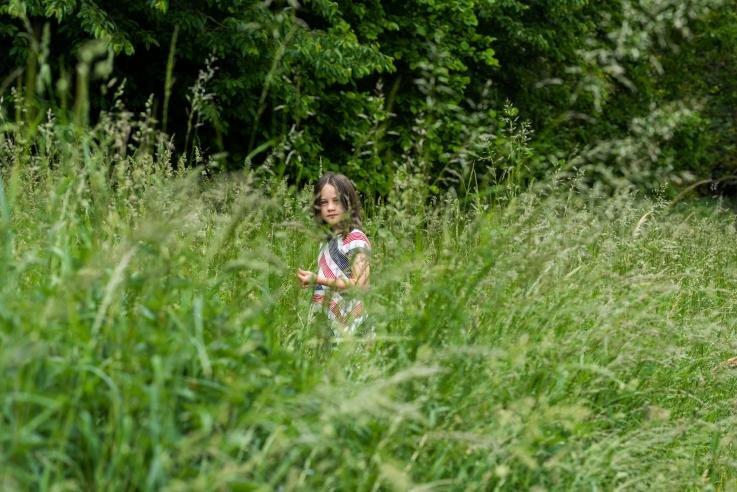 En pige på tur i naturen. Hun forsvinder næsten i det høje græs, og der er skov i baggrunden